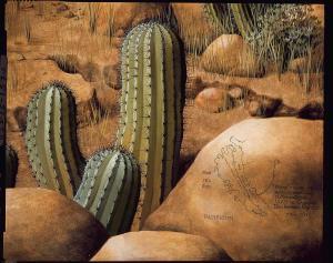 Secuencia histórica Baja California (Detalle)